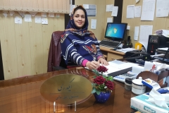 سولماز ایگدری کارشناس حسابداری مسئول واحد امور مالی بیمارستان